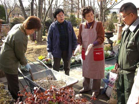 冬の花、寄せ植えワークショップ_1|竜門園