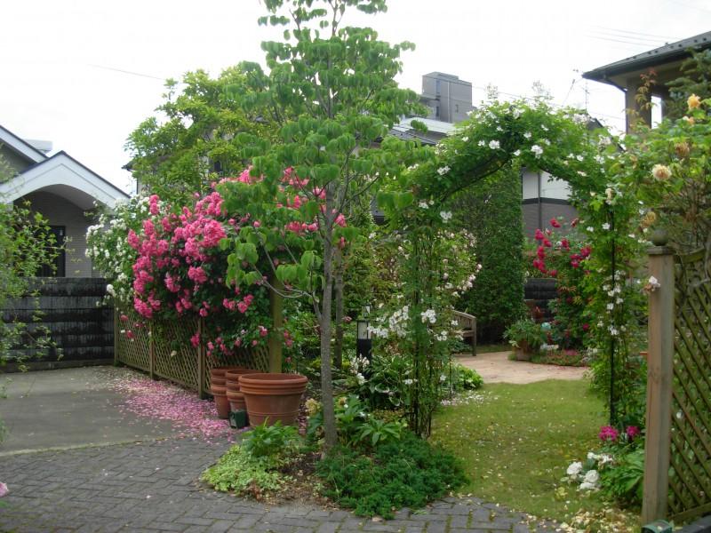 仙台市青葉区 H様邸 薔薇と宿根草の庭_3|竜門園