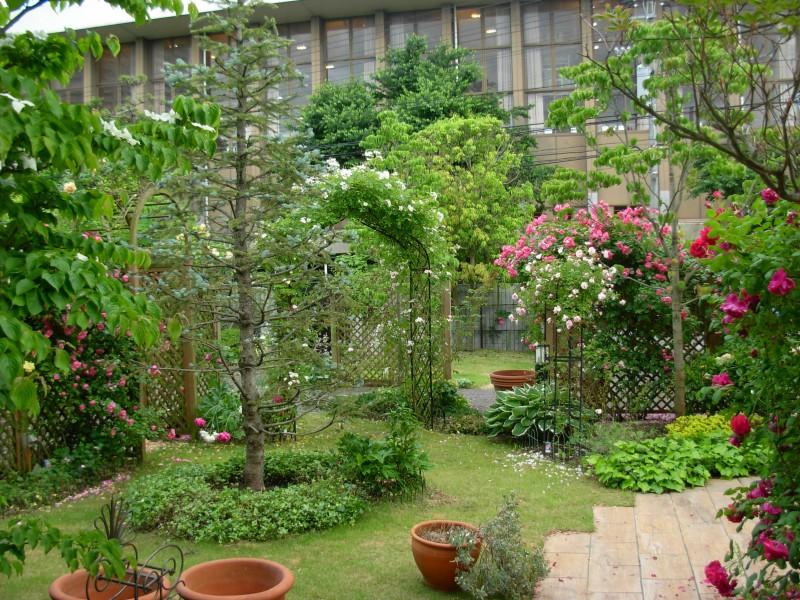 仙台市青葉区 H様邸 薔薇と宿根草の庭_7|竜門園