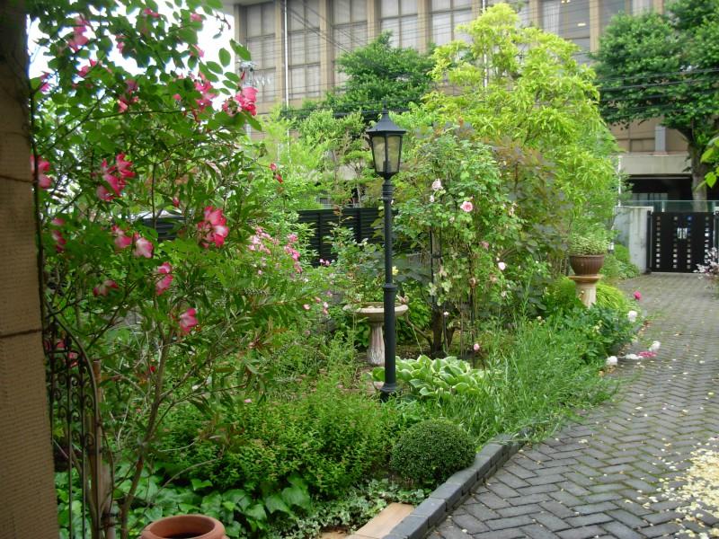仙台市青葉区 H様邸 薔薇と宿根草の庭_10|竜門園
