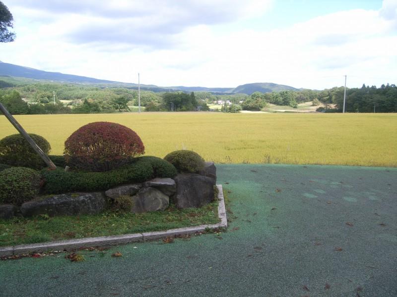 福島県 T邸 借景を生かした回遊式池泉庭園_1|竜門園