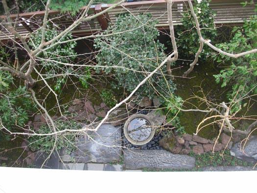 東京都白金台 I 邸 「白滋の森」_9|竜門園