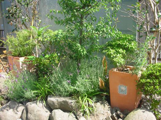 仙台市泉区 K様邸 雑木の庭_2|竜門園