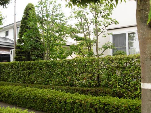 仙台市泉区 K様邸 雑木の庭_1|竜門園