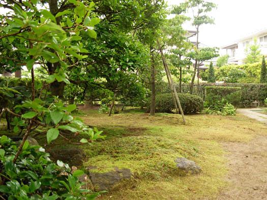 仙台市泉区 O様邸 緑の目隠しフェンス_3|竜門園