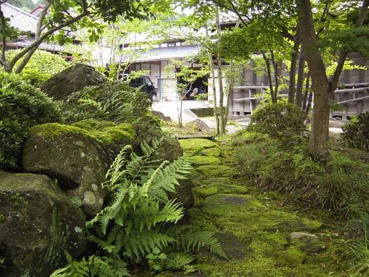 仙台市泉区 S様邸 苔むす庭|竜門園