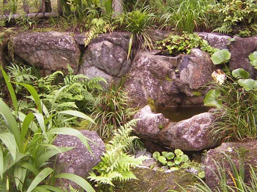 仙台市泉区 S様邸 苔むす庭_4|竜門園