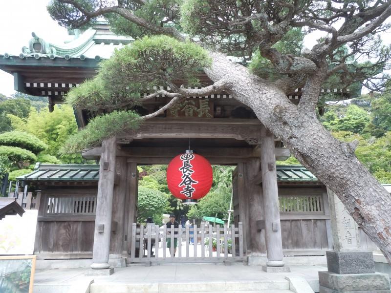 いざ鎌倉|竜門園