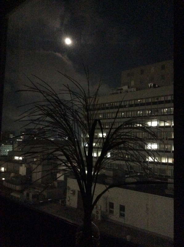 中秋の名月_3|竜門園
