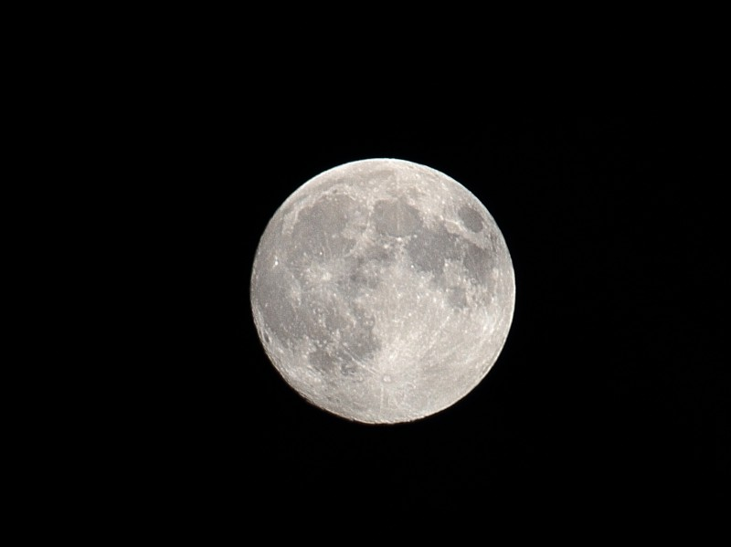 中秋の名月|竜門園