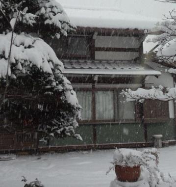 冠雪の風景_1|竜門園