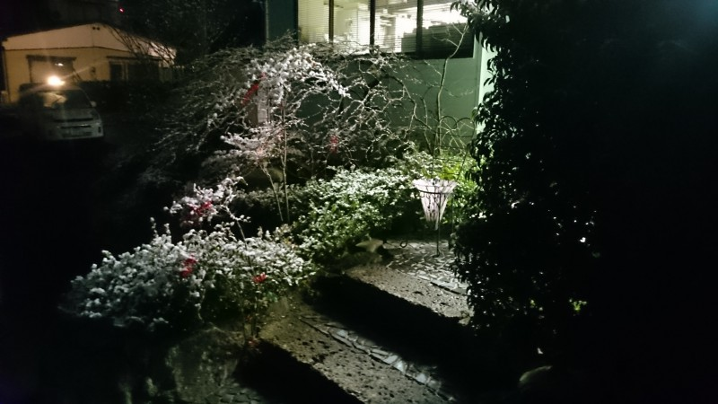冠雪の風景|竜門園