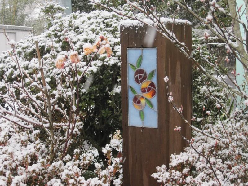 雪化粧_1|竜門園