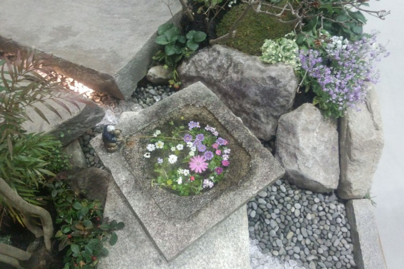 東北ラン展2015「暖蘭物語」~内でも外でもない自然と共に過ごすガーデンリビング空間~_4|竜門園