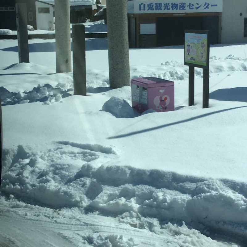社員旅行(雪の鳥取へ)_3|竜門園